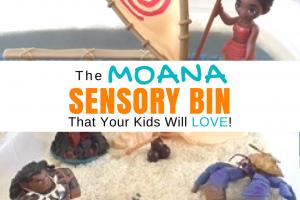Moana Sensory Bin