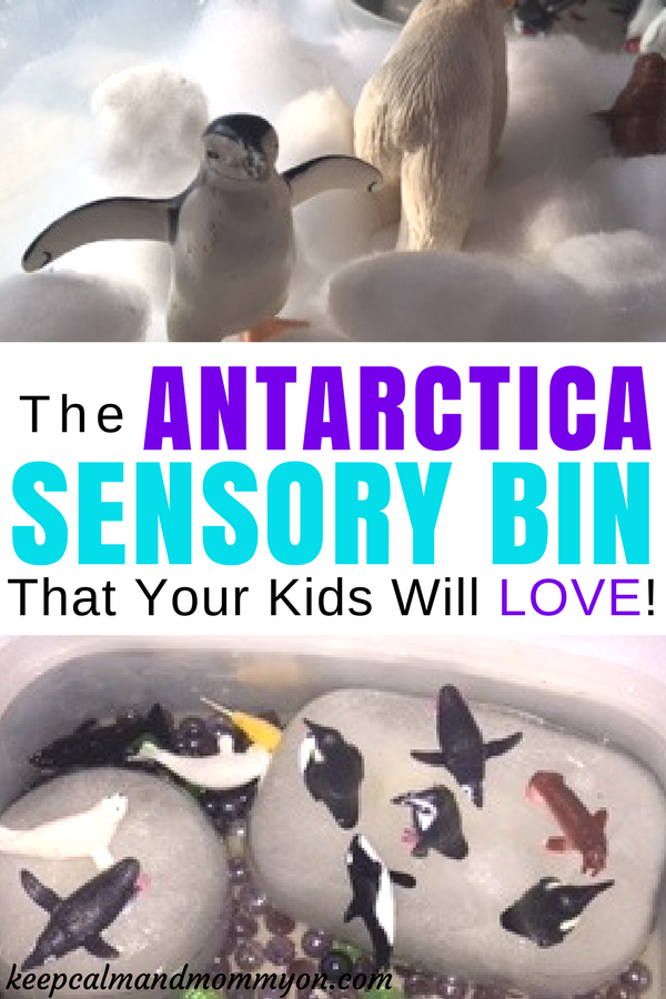The Antarctica Sensory Bin That Your Kids Will Love