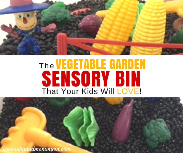 Vegetable Garden Sensory Bin!