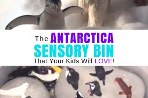 Antarctica Sensory Bin
