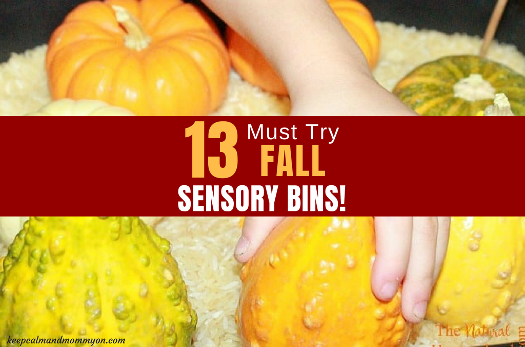 13 Fall Sensory Play Bins!