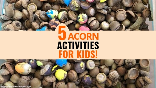 5 Acorn Activities for Kids!