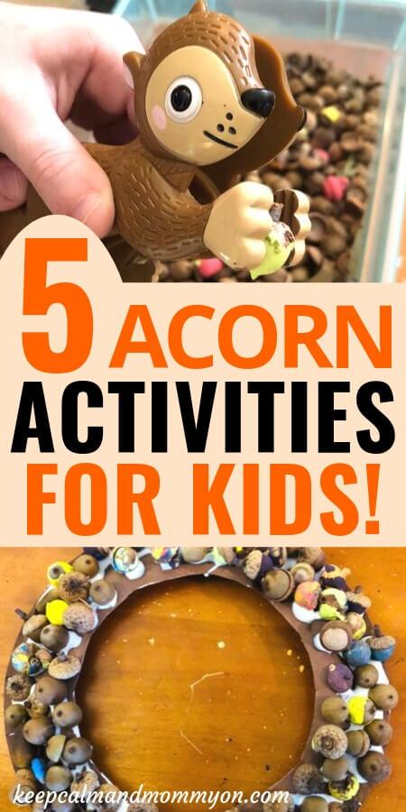 Acorn Activities