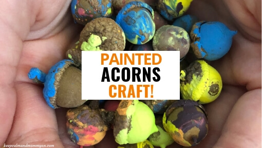 Painted Acorns Craft!