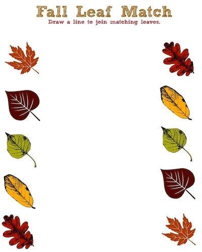Fall Leaf Printable Activity Sheet - Leaf Match