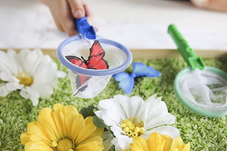 How to Make a Butterfly Sensory Activity for Preschoolers