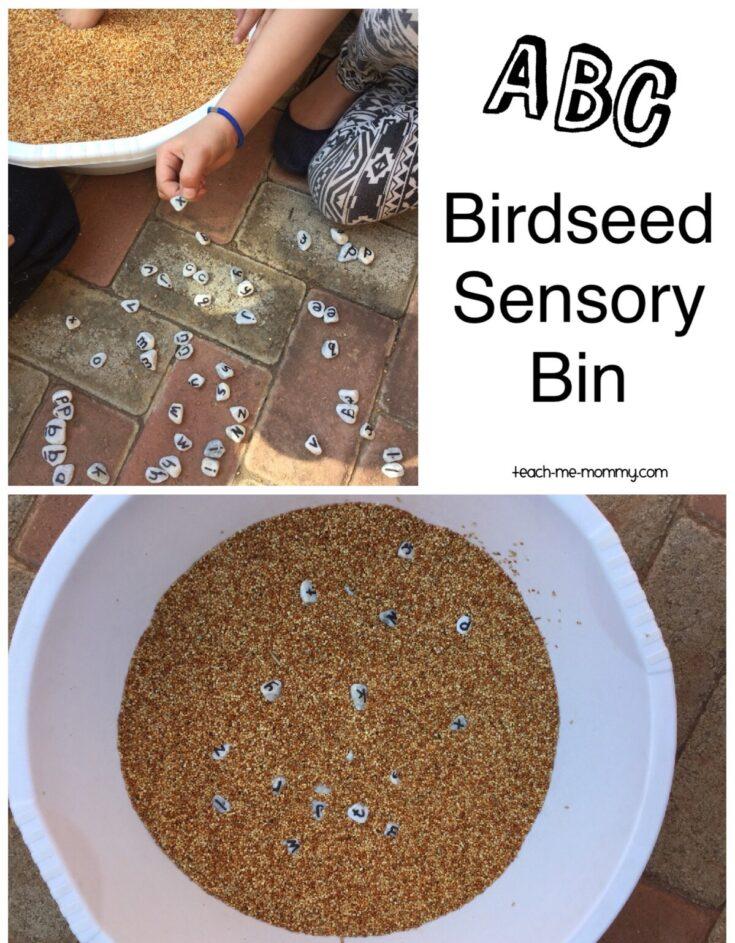 ABC Birdseed Sensory Bin