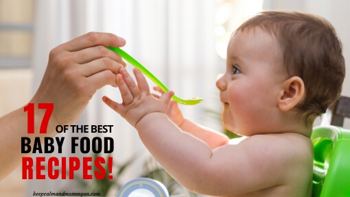 The Best Baby Food Recipes!