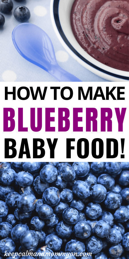 Blueberry Baby Food